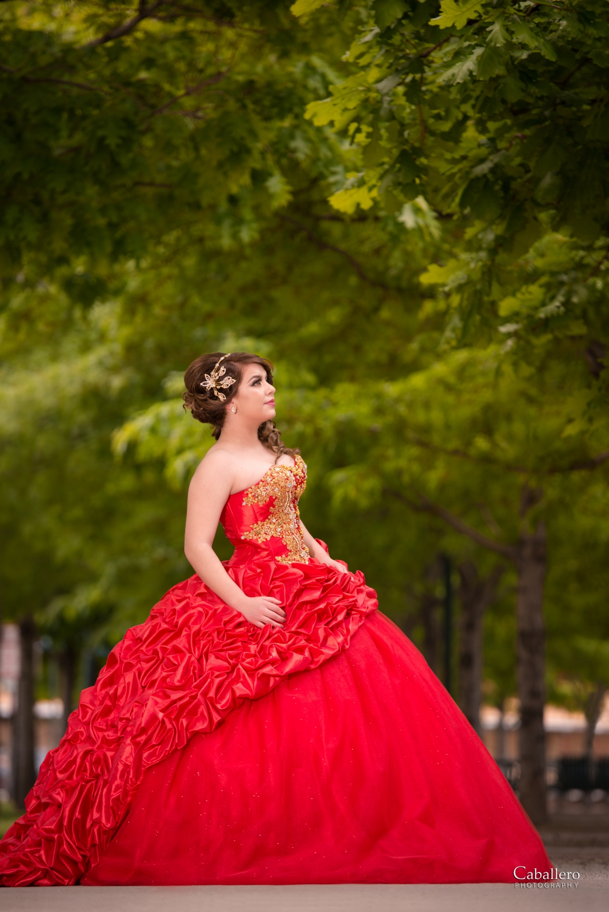 Beautiful Quinceanera Dress