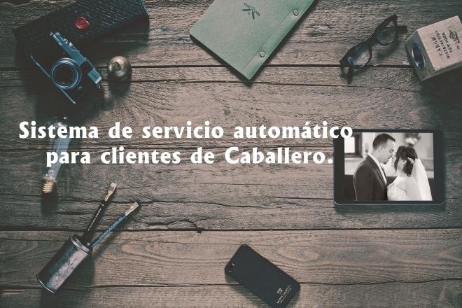 Sistema para clientes de Jesse Caballero